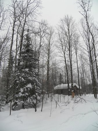 Silent Sport Lodge Bed and Breakfast: Discovery while snow shoeing on the trails.