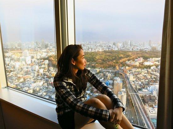 Park Hyatt Tokyo: can't beat that view!