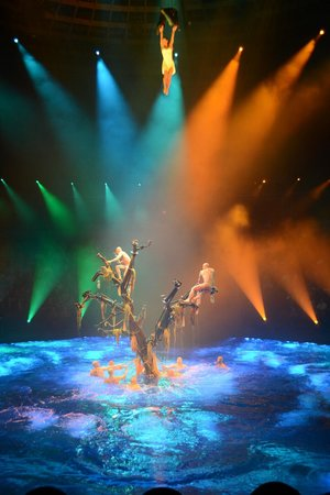 Le Reve - The Dream: tree rising from the pool