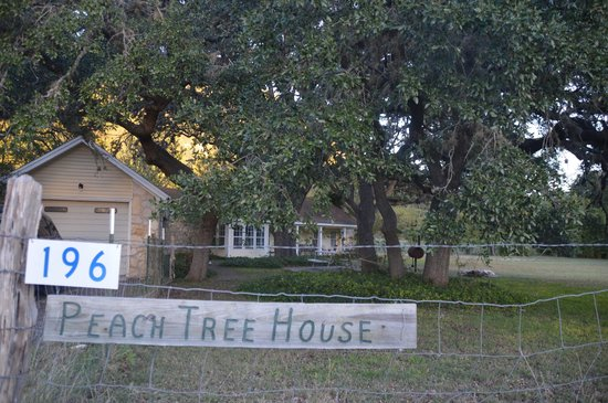 Foxfire Log Cabins: The Peach Tree is a cute house, but needs some TLC