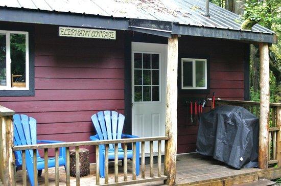 Surfs Inn Rainforest Cottages and Guesthouse: Elephant Cottage