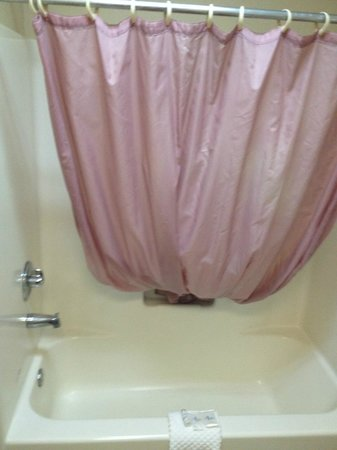 Red Roof Inn & Suites Pensacola - NAS Corry : Shower