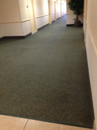 Red Roof Inn & Suites Pensacola - NAS Corry : Hallway