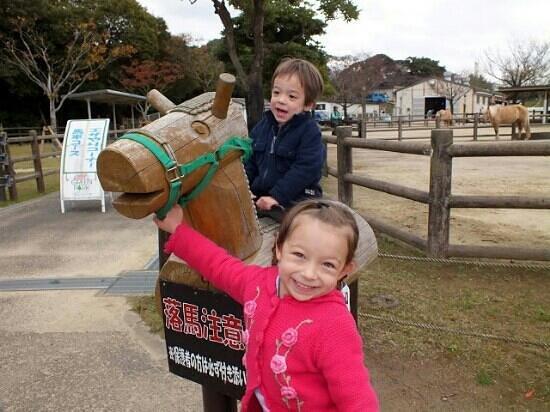 Green Park : pony rides.