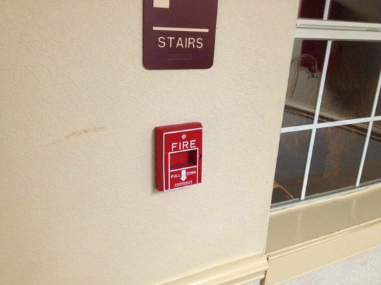 Red Roof Inn & Suites Pensacola - NAS Corry : Blood on window