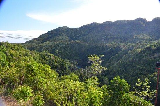 Danao Adventure Park : Park