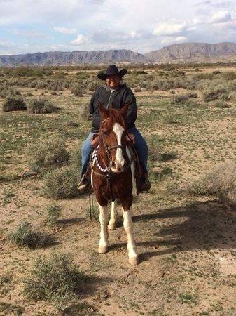 KOLI Equestrian Center: Our guide...