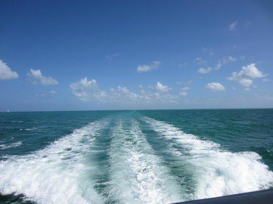 Acquarius Sea Tours: Wake Behind the Boat
