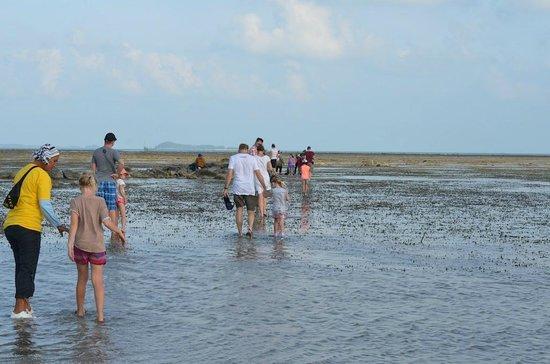 Loola Adventure Resort: Beach walk