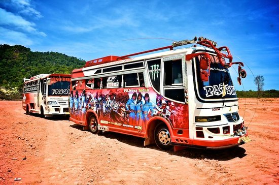 Loola Adventure Resort: The Groovy Buses