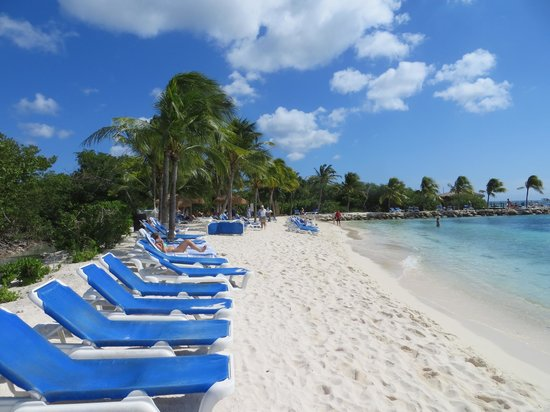 Renaissance Aruba Resort & Casino: View from the beach, food and beer on the way!