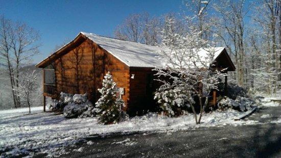Shenandoah Woods: Fern Bank Cabin