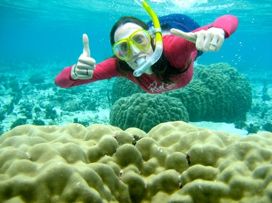 Conflict Bay Lodge: Snorkeling the pristine Marau water