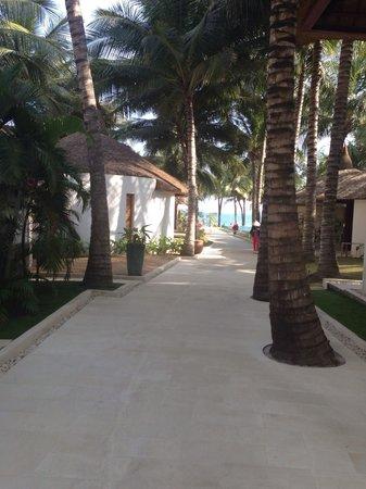Sunsea Resort: Территория