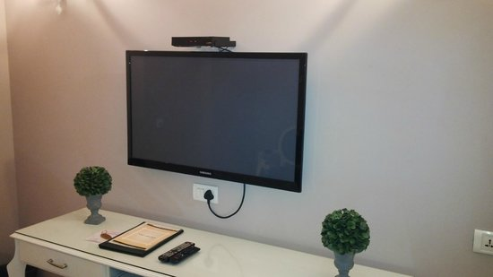 Hotel Ajanta: Large LED TV - lot of channel selections