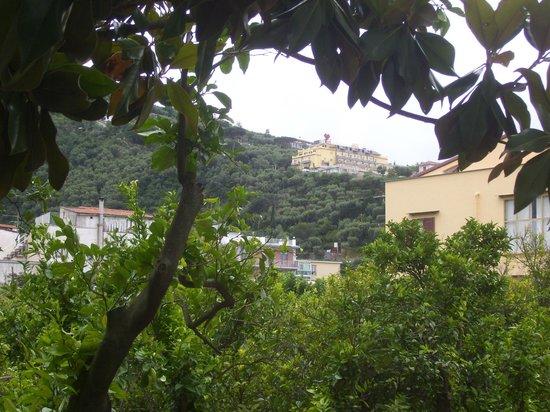 Hotel Angelina: Vista desde el balcón