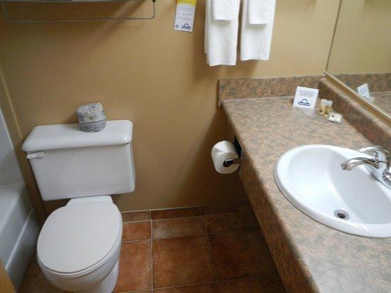 Days Inn - Estevan: Bathroom.