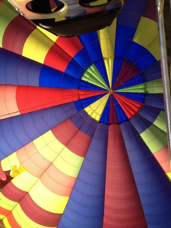 Wine Country Balloons: great perspective looking up from the basket