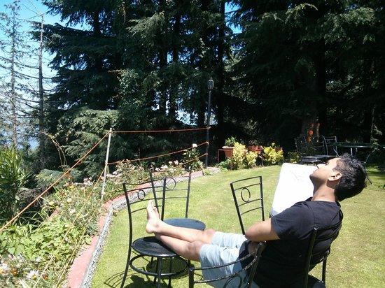 The Chalets Naldehra: Lazy in the sun