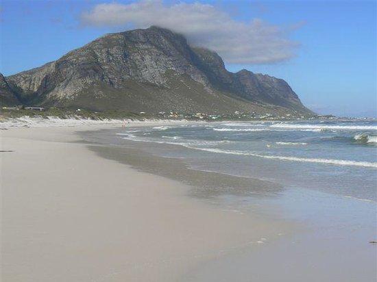 Betty's Bay, South Africa: Betty's Main Beach