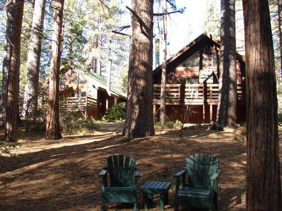 Quiet Creek Inn : View from creek