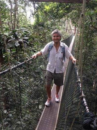 Taman Negara National Park: For the high cross