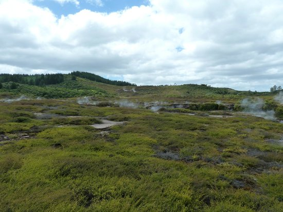 Craters of the Moon : A view across the steamy landscape