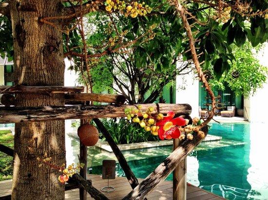 Siam Kempinski Hotel Bangkok : hotel pool