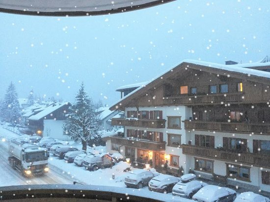 Alpine Residence Villa Adler: panorama dalla camera 16