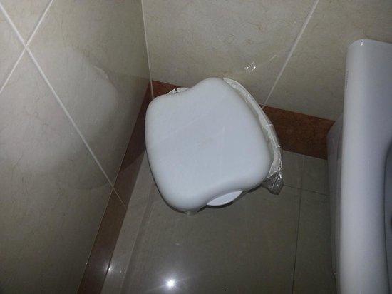 Cestini Rifiuti Da Bagno : Il cestino rifiuti del bagno con coperchio rotto foto di albatres