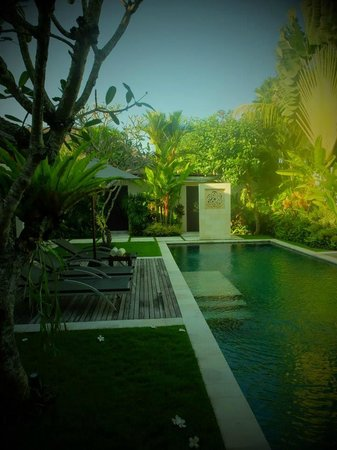 Saba Villas: Pool in the villa