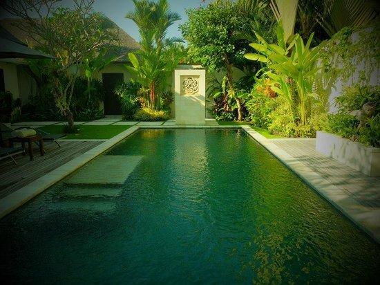 Saba Villas: Pool