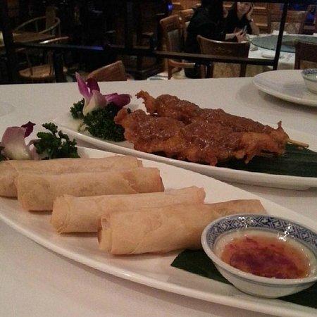 Zen China Restaurant: Starters- Chicken Satay & Duck rolls :)