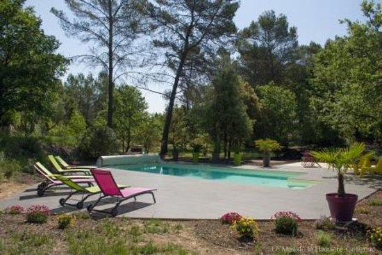 Le Mas de la Flaquière : Piscine dans le parc - Grande terrasse avec bains de soleil et tables basses