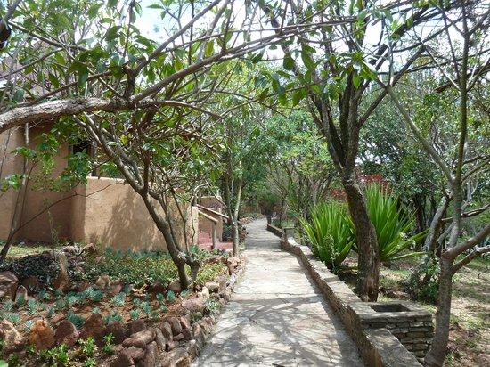 Mara Sopa Lodge: The garden
