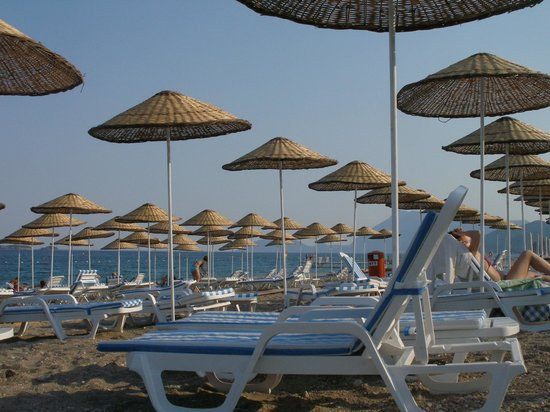 Armas Kaplan Paradise: Пляж
