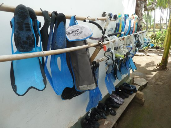 Damai Homestay: équipement de snorkeling à disposition