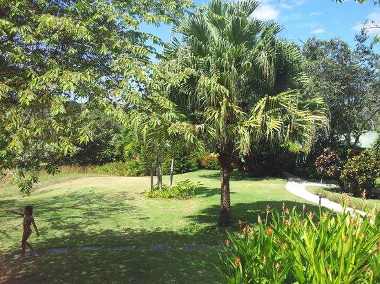 Hotel Luna Azul: Le jardin