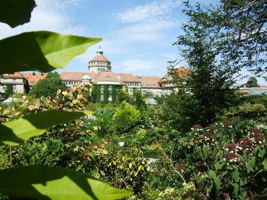 Botanischer Garten Muenchen-Nymphenburg: Klasse Ausblick