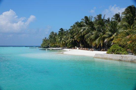 Kurumba Maldives : Island scene