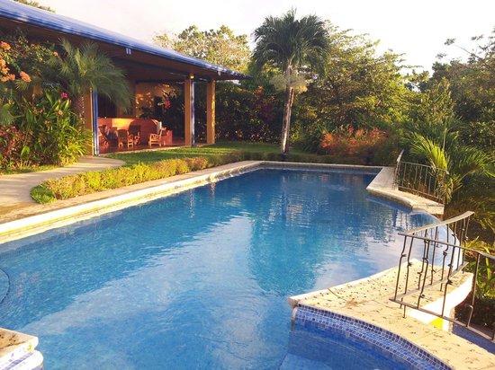 Hotel Luna Azul: La piscine