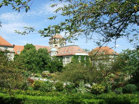 Botanischer Garten Muenchen-Nymphenburg: postkartenansicht