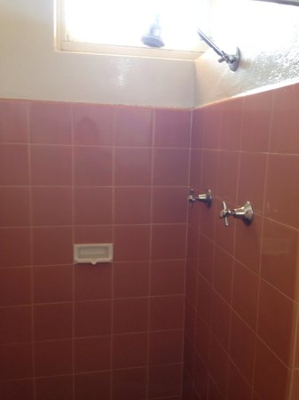 Econo Lodge Griffith Motor Inn: Shower - retro look but it worked well!