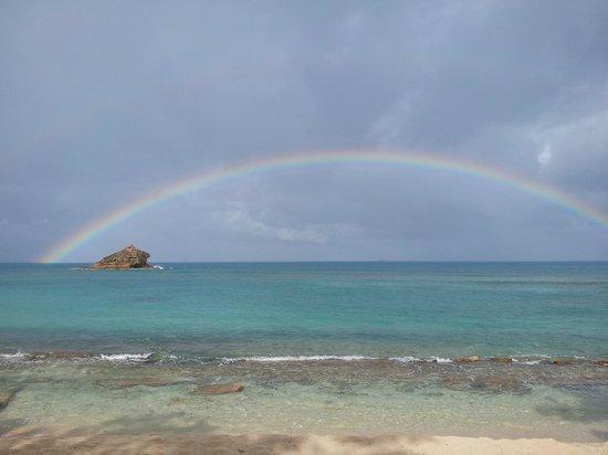 Hawksbill by Rex Resorts: Hawksbill rock rainbow