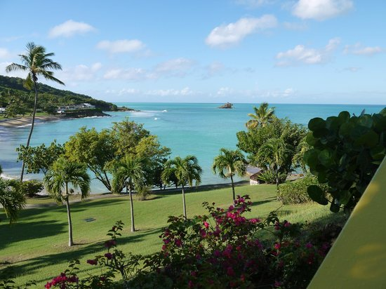 Hawksbill by Rex Resorts: View from grounds