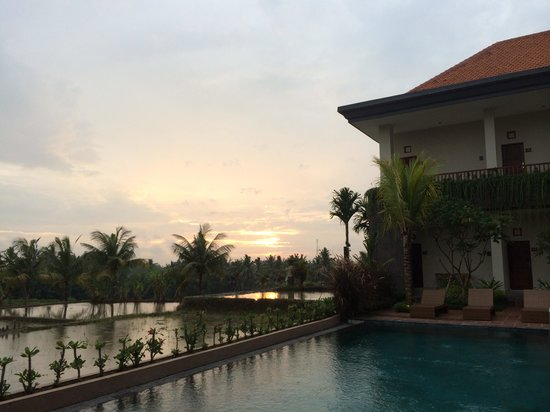 Inata Bisma Resort & Spa Ubud: sunset over fields and pool <3