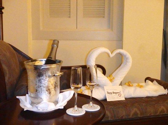 Raffles Hotel Singapore : Room service!