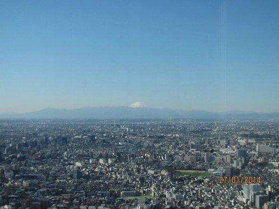 Tokyo Metropolitan Government Buildings: Mt Fuiji from TMG building, Tokyo