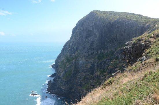 Lone Kauri Lodge: Ahu Ahu Cliffs