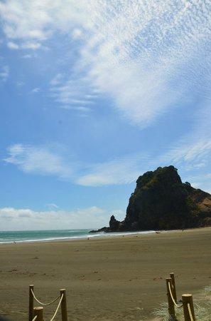 Lone Kauri Lodge: Lion Rock, Piha beach